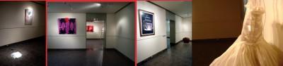 BEIRUT VILLA AUDI - 4 showroom