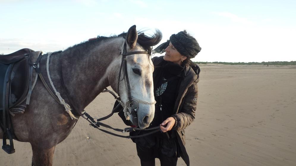 caballo bereber- 1 dicember 2012- Essaouira-Maroc