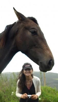 under the horses- photo M.Alemany